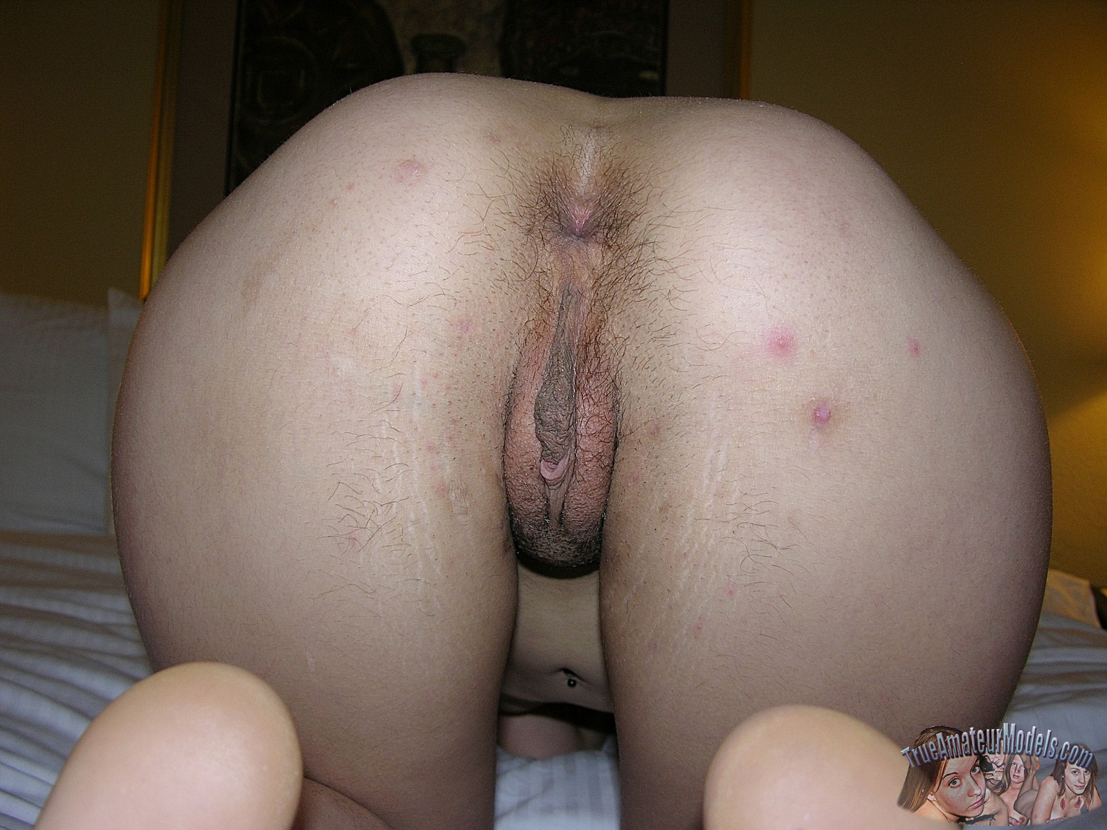 porn hairy ass hd