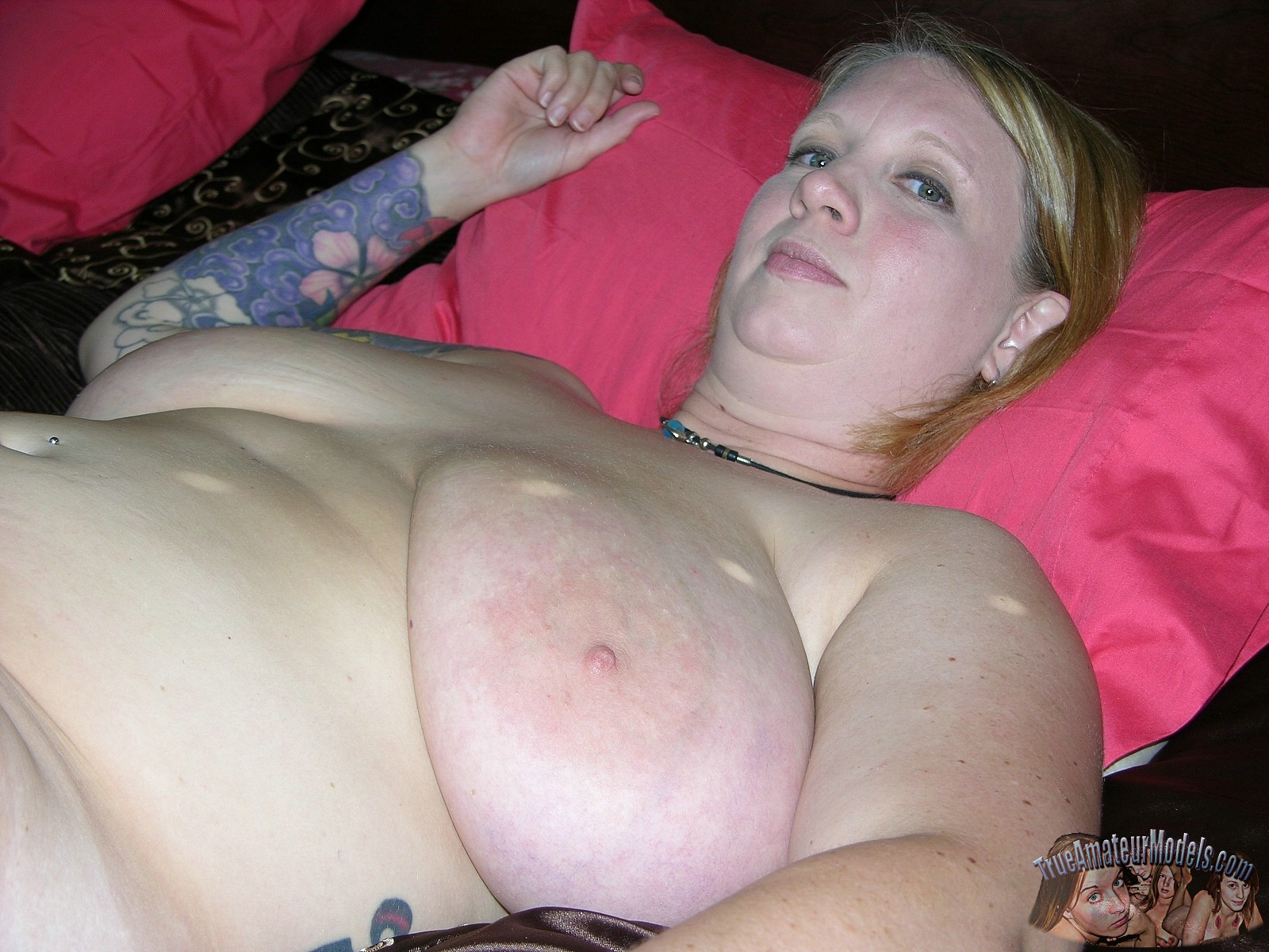 Amateur chubby women with big tits accept. The