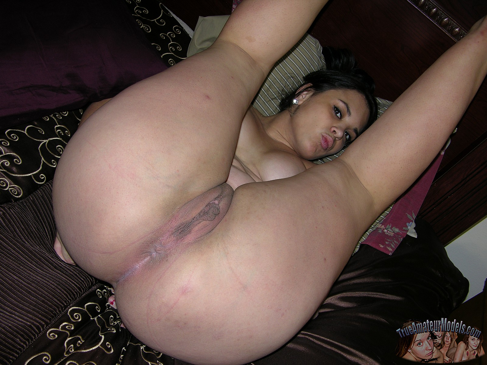 Best amateur wife pussy